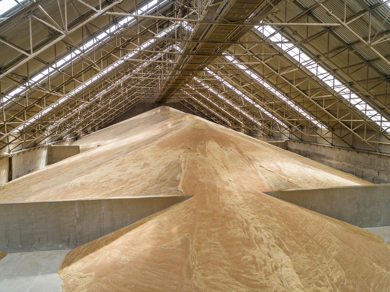 Вантажообіг Neptune 2019/20 маркетинговий рік склав  понад 2,5 млн тонн зернових